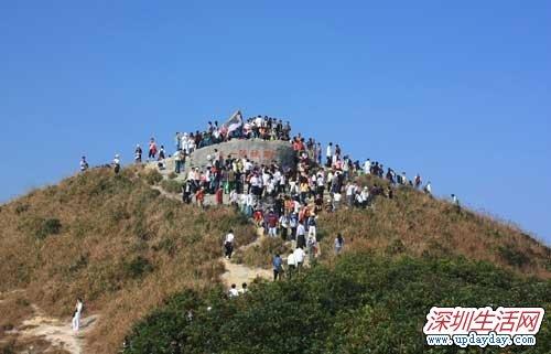 深圳梧桐山公园怎么去