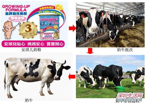 香港妈妈钟爱法国货,认准品牌选好牛